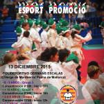 III Poster Festival de Nadal 2015